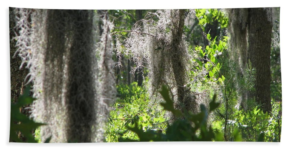 Florida Hand Towel featuring the photograph Home by Greg Patzer