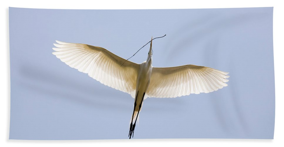 Snowy Egret Hand Towel featuring the photograph Home Improvements by Mary-Ella Bowles