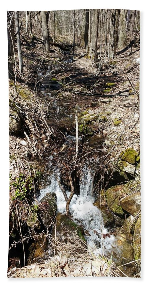 Hand Towel featuring the photograph Home Stream by Pamela Morin