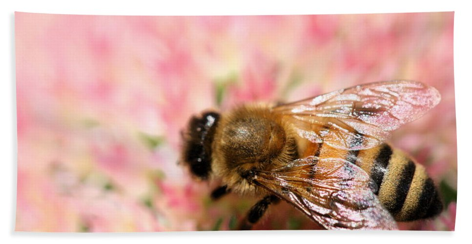 Bee Bath Sheet featuring the photograph Honey Bee by Angela Rath