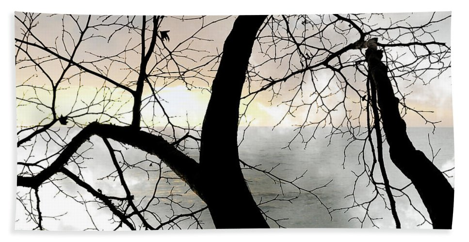 Tree Bath Sheet featuring the photograph Hope by Munir Alawi