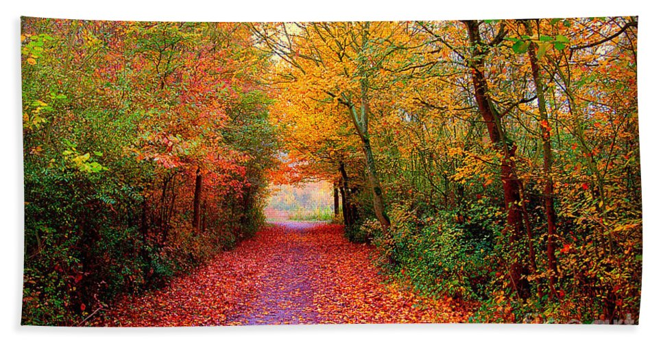Autumn Bath Towel featuring the photograph Hope by Jacky Gerritsen