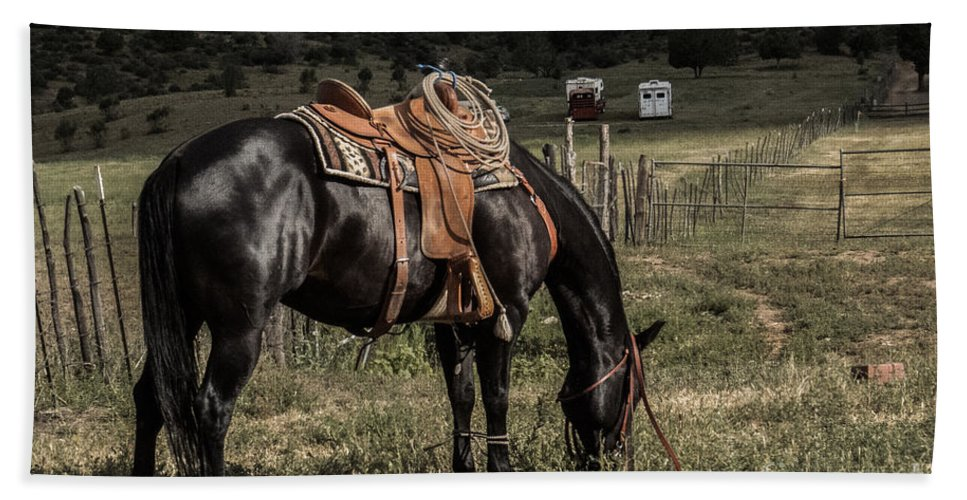 Horse Hand Towel featuring the photograph Horse 3 by Christy Garavetto