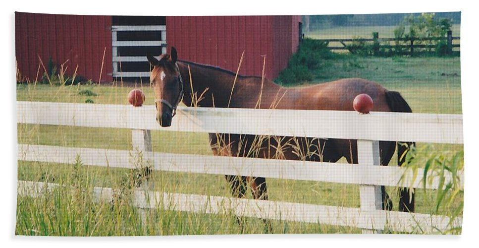 Landscape Hand Towel featuring the photograph Horse And The Barn by Michelle Powell