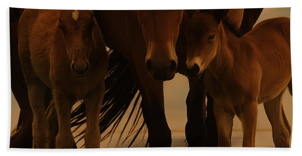Horse Photographs Hand Towel featuring the painting Horse Family by Gull G
