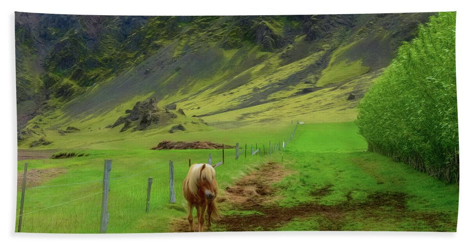 Horse Bath Sheet featuring the photograph Horse On The South Iceland Coast by Jeffrey Hamilton