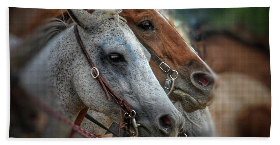 Horse Bath Sheet featuring the photograph Horse Pair by April Robinson