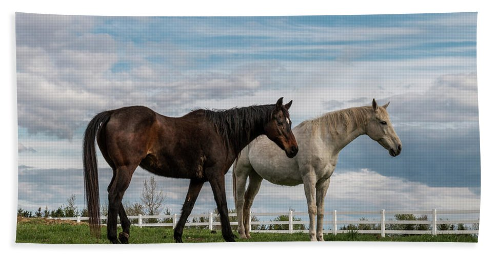 Horse Bath Towel featuring the photograph Horses #2 by Patti Deters