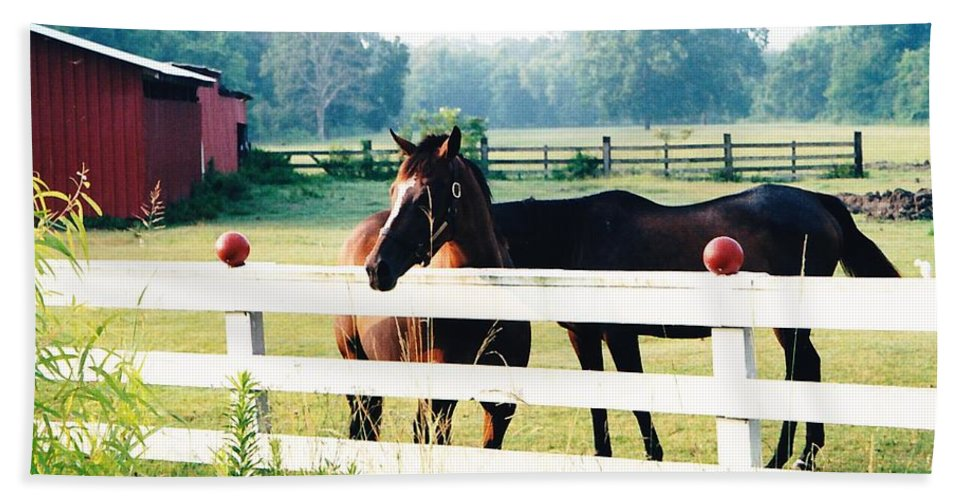 Horses Hand Towel featuring the photograph Horse Stable by Michelle Powell