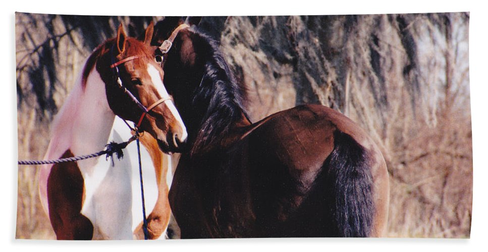 Horses Hand Towel featuring the photograph Horse Talk by Michelle Powell