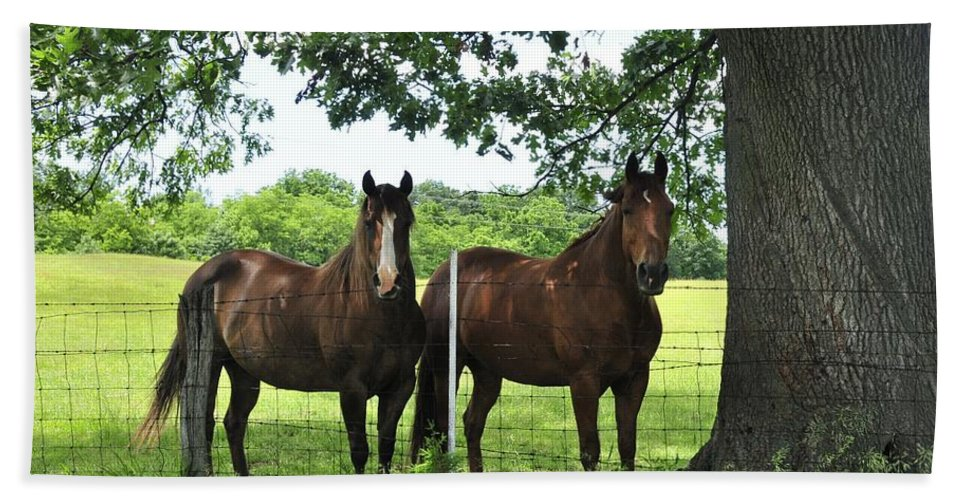 Horses Hand Towel featuring the photograph Horses by David Arment