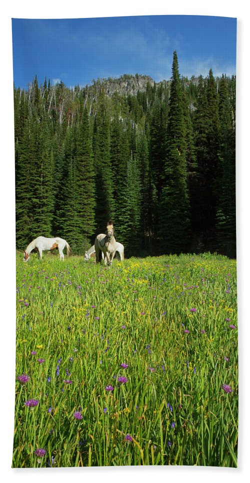 Wallowa Hand Towel featuring the photograph Horses Getting A Break by Belinda Greb