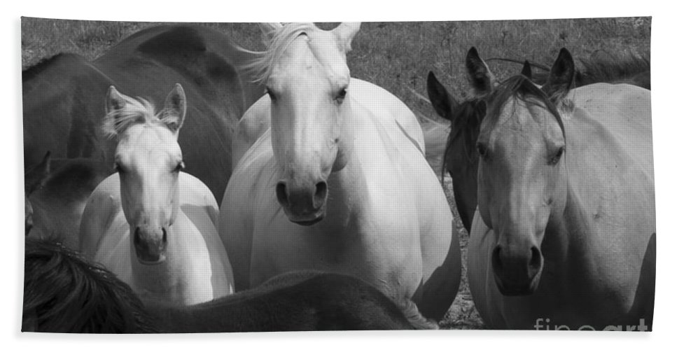 Horses Black And White Bath Sheet featuring the photograph Horses In Black And White by Carl Paulson