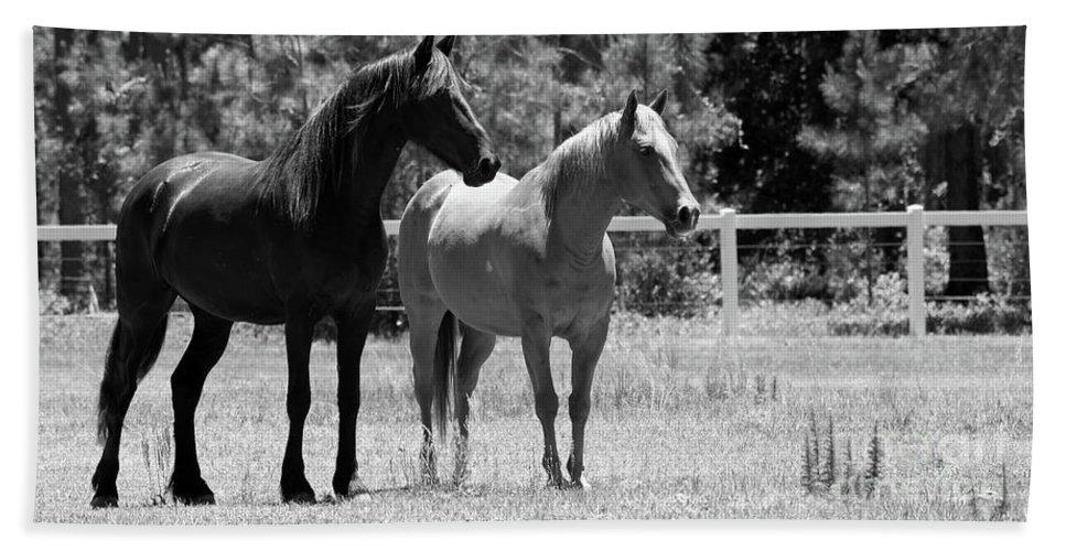 Horses Bath Sheet featuring the photograph Horses by Julie Blackburn