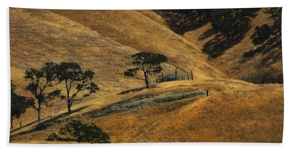 California Bath Towel featuring the photograph Hot Days by Karen W Meyer
