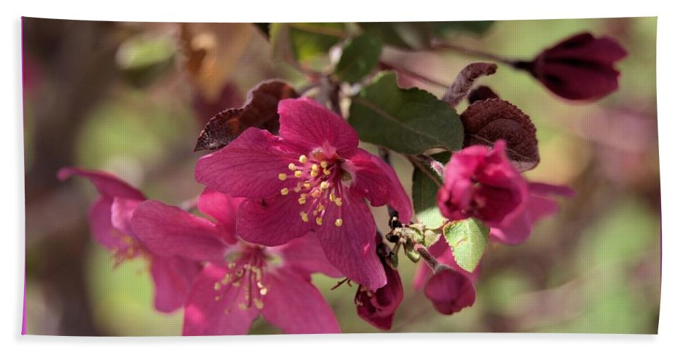 Pink Hand Towel featuring the photograph Hot Pink Blossoms by Wendy Fox
