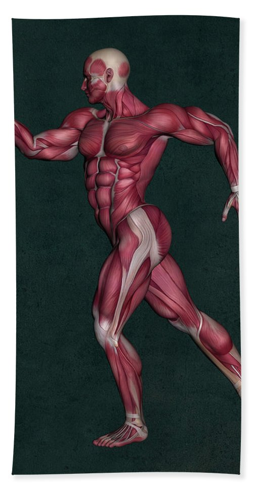 Human Anatomy Hand Towel featuring the mixed media Human Anatomy 29 by Barroa Artworks