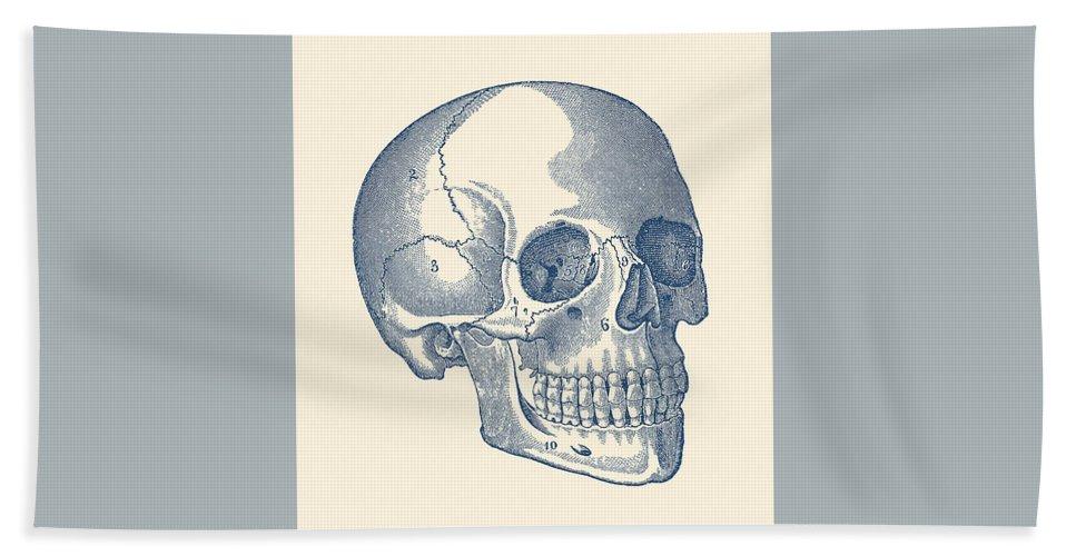 Human Skull Diagram Vintage Anatomy Print Bath Towel For Sale By