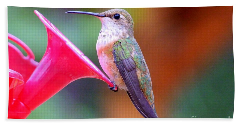 Bird Hand Towel featuring the photograph Hummingbird - 18 by Mary Deal