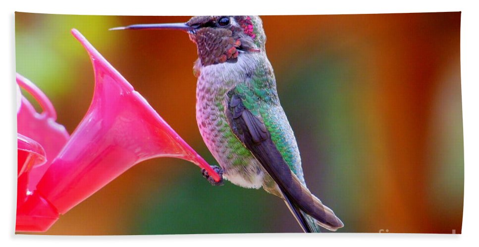 Bird Hand Towel featuring the photograph Hummingbird - 28 by Mary Deal