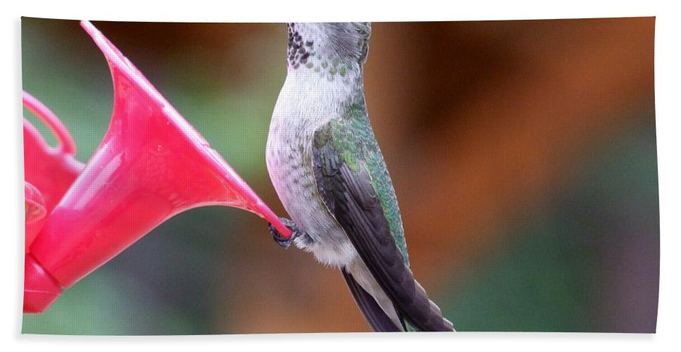 Green Bath Sheet featuring the photograph Hummingbird 1 by Mary Deal