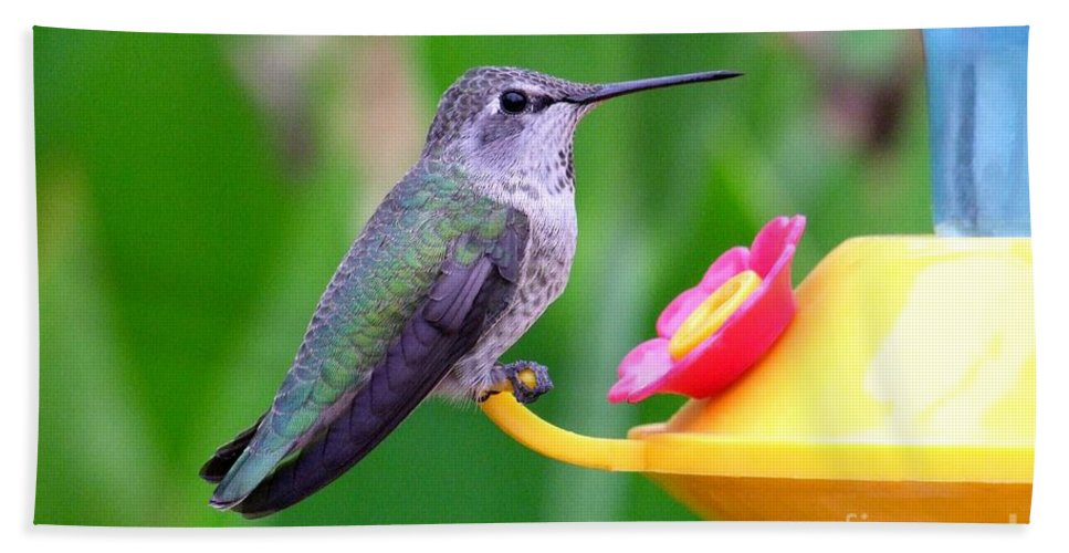 Green Hand Towel featuring the photograph Hummingbird 32 by Mary Deal