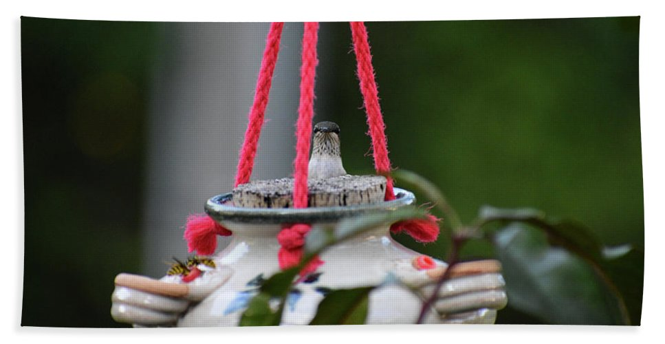 Hummingbird Bath Sheet featuring the photograph Hummingbird At Sunrise Peek A Boo by Thomas Woolworth