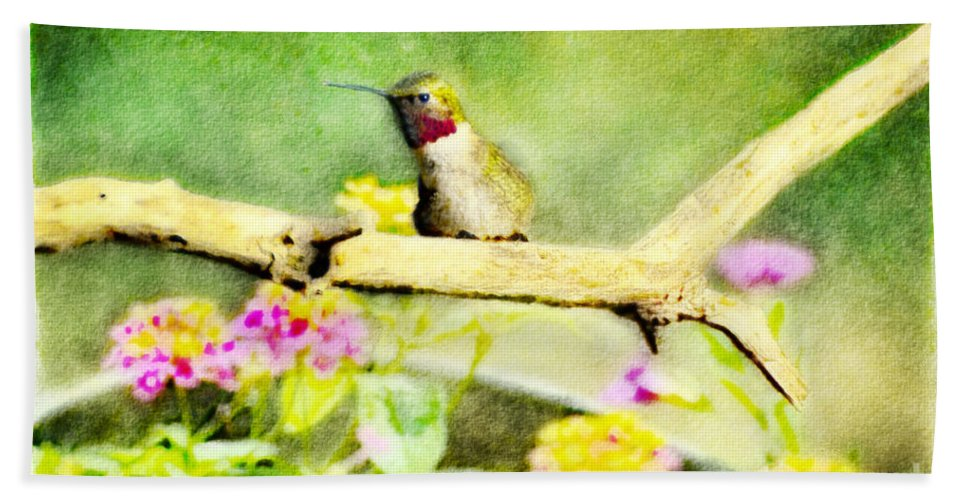 Nature Hand Towel featuring the photograph Hummingbird Attitude - Digital Paint 1 by Debbie Portwood