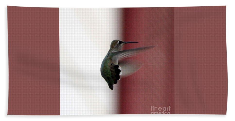 Hummingbird Hand Towel featuring the photograph Hummingbird Changing Course by Carol Groenen