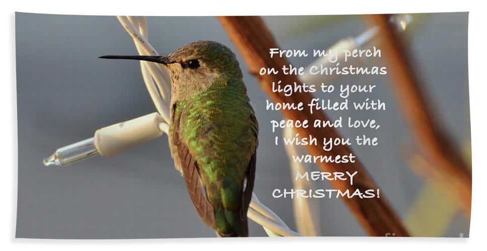 Christmas Wished Bath Towel featuring the photograph Hummingbird Christmas Card by Debby Pueschel