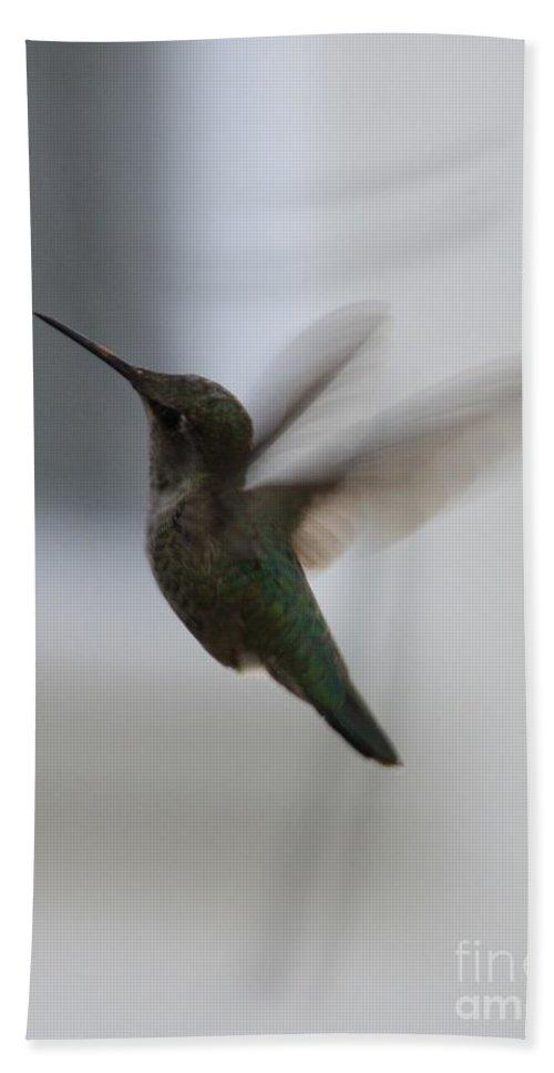 Hummingbird Hand Towel featuring the photograph Hummingbird In Flight by Carol Groenen