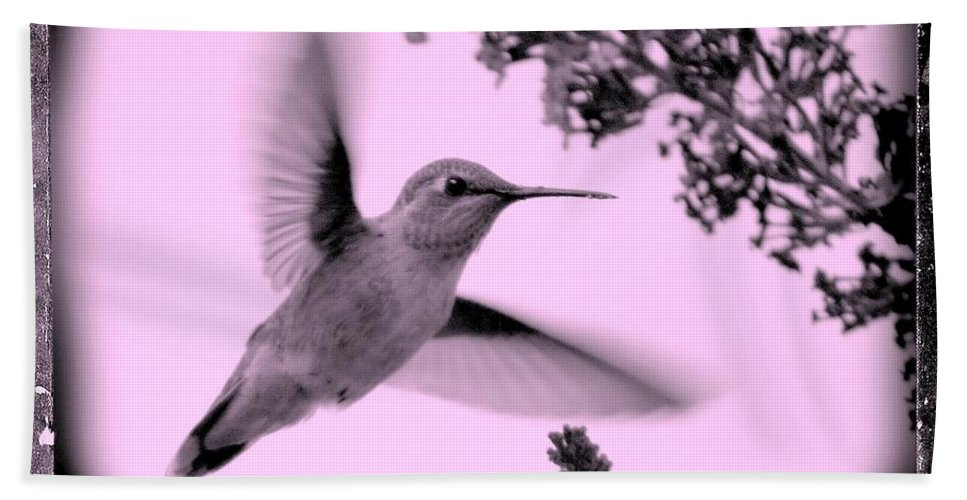 Hummingbird Bath Sheet featuring the photograph Hummingbird With Old-fashioned Frame 2 by Carol Groenen