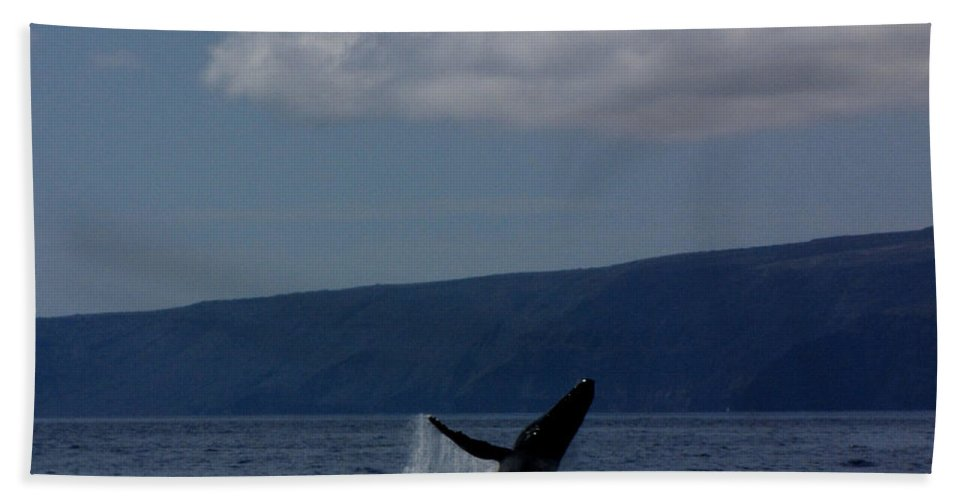 Whale Hand Towel featuring the photograph Humpback Whale by Sarah Houser