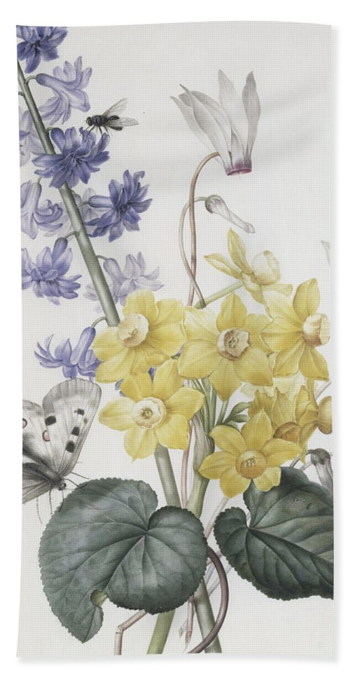 Redoute Hand Towel featuring the painting Hyacinth, Cyclamen And Narcissi by Pierre Joseph Redoute