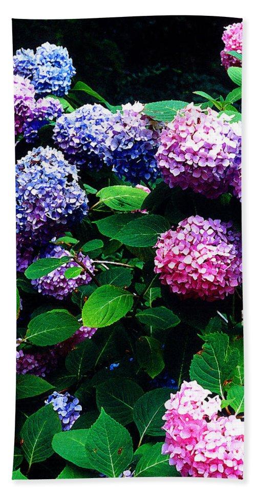 Flowers Bath Sheet featuring the photograph Hydrangeas by Nancy Mueller