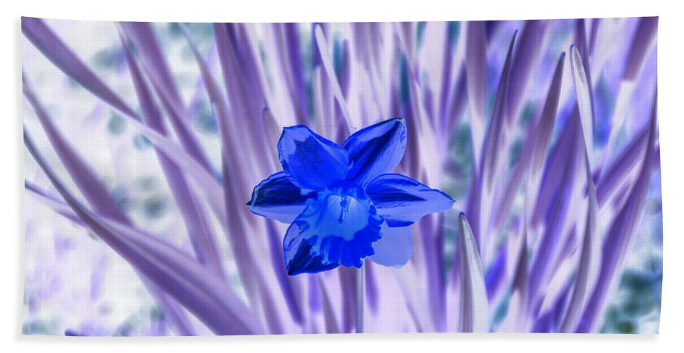 Darrell Hand Towel featuring the photograph I Am So Blue by Darrell Clakley