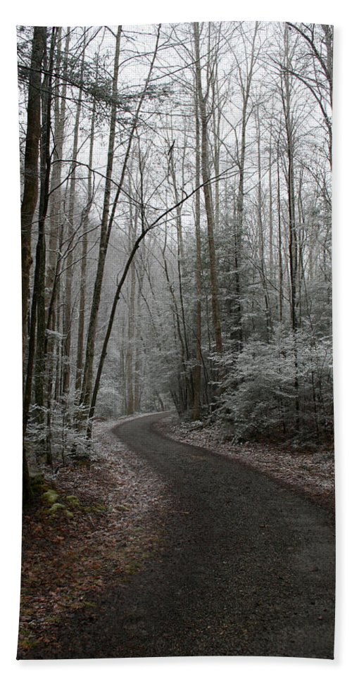 Nature Road Country Woods Forest Tree Trees Snow Winter Peaceful Quite Path White Forest Drive Bath Towel featuring the photograph I Am The Way by Andrei Shliakhau