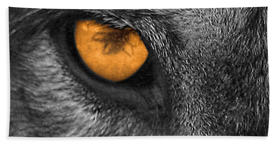 Wolf Hand Towel featuring the photograph I Am Wolf by Shari Jardina