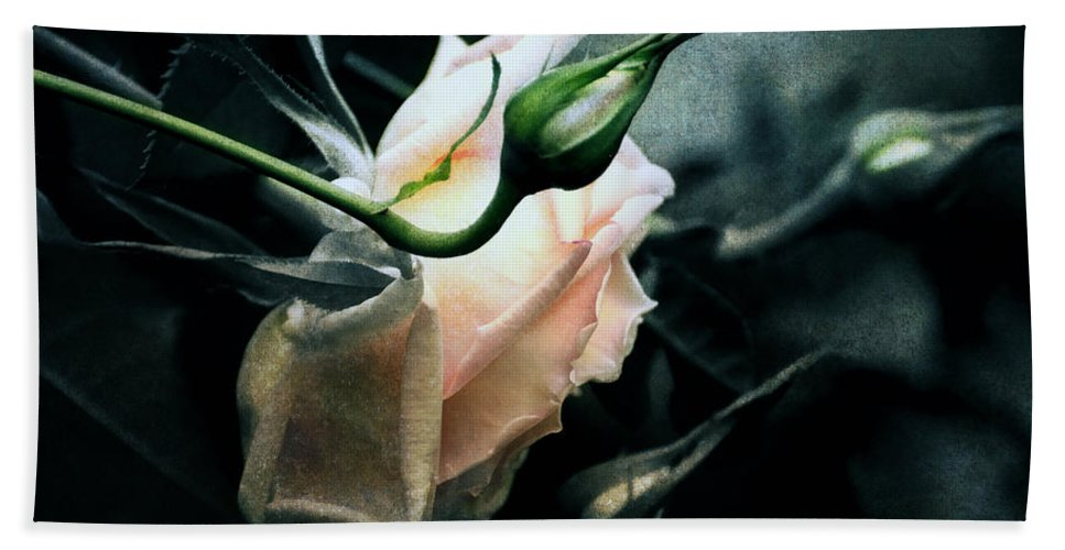 Rose Hand Towel featuring the digital art I Am Your Ghost Of A Rose by Georgiana Romanovna