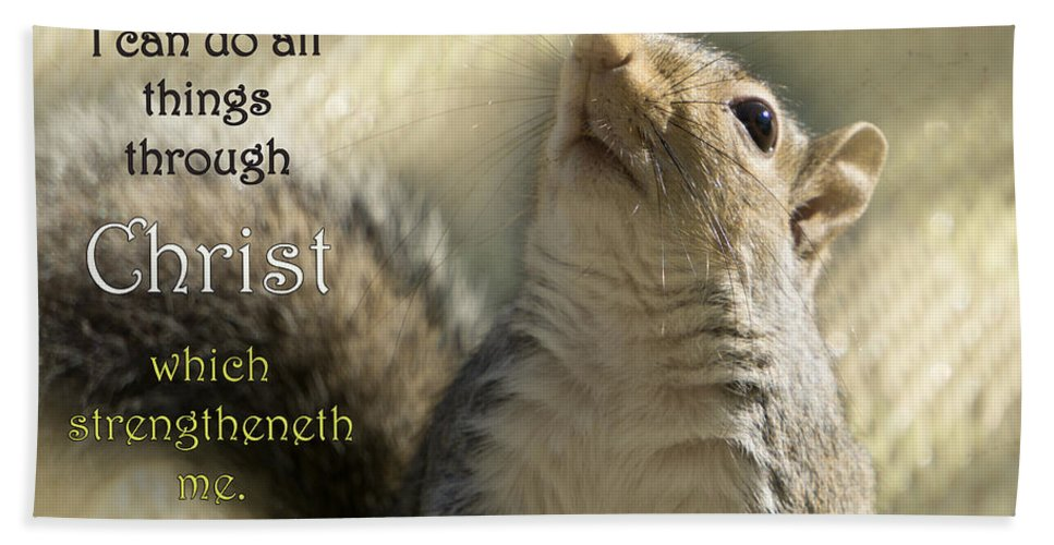 Squirrel Hand Towel featuring the photograph I Can Do It by Karen Beasley