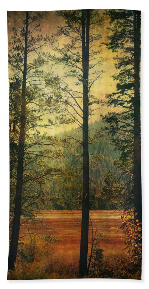 South Lake Tahoe Hand Towel featuring the photograph I Don't Know What To Believe In by Laurie Search