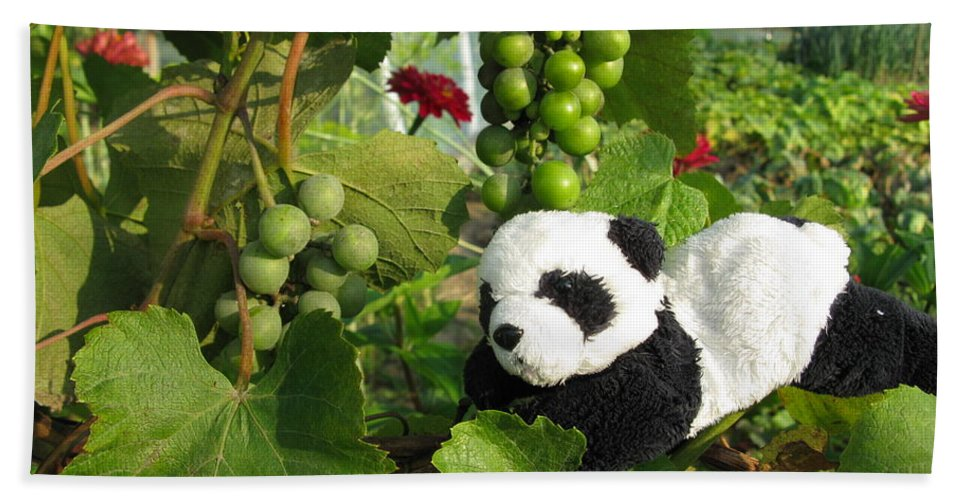 Baby Panda Hand Towel featuring the photograph I Love Grapes Says The Panda by Ausra Huntington nee Paulauskaite