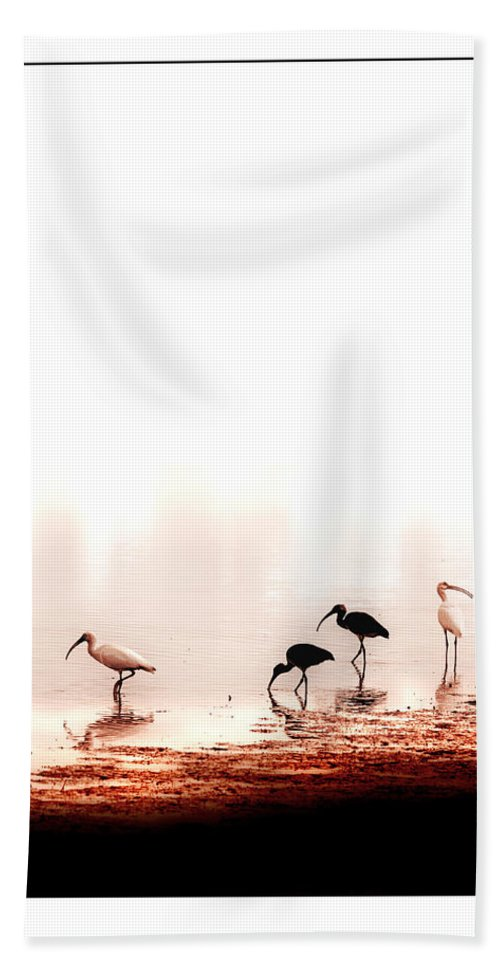 Ibis Hand Towel featuring the photograph Ibis by Mal Bray
