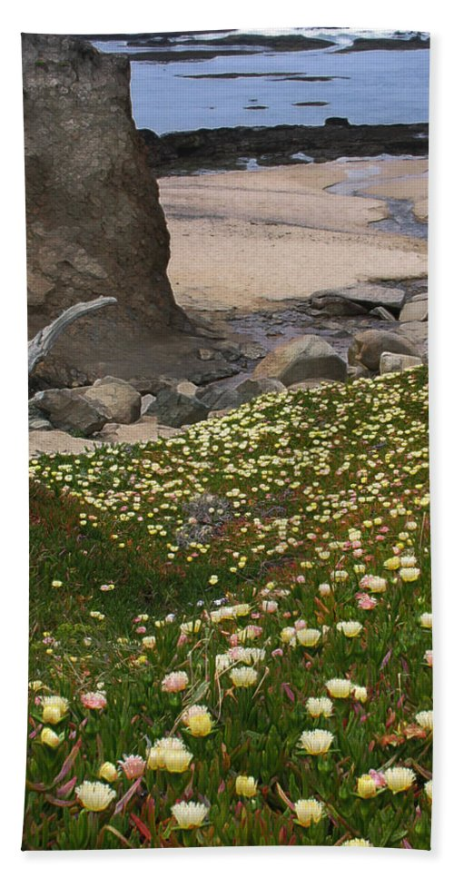 Landscape Hand Towel featuring the photograph Ice Plants On Moss Beach by Karen W Meyer