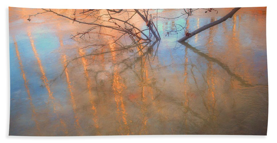 Ice Bath Towel featuring the photograph Ice Reflections 2 by Tara Turner