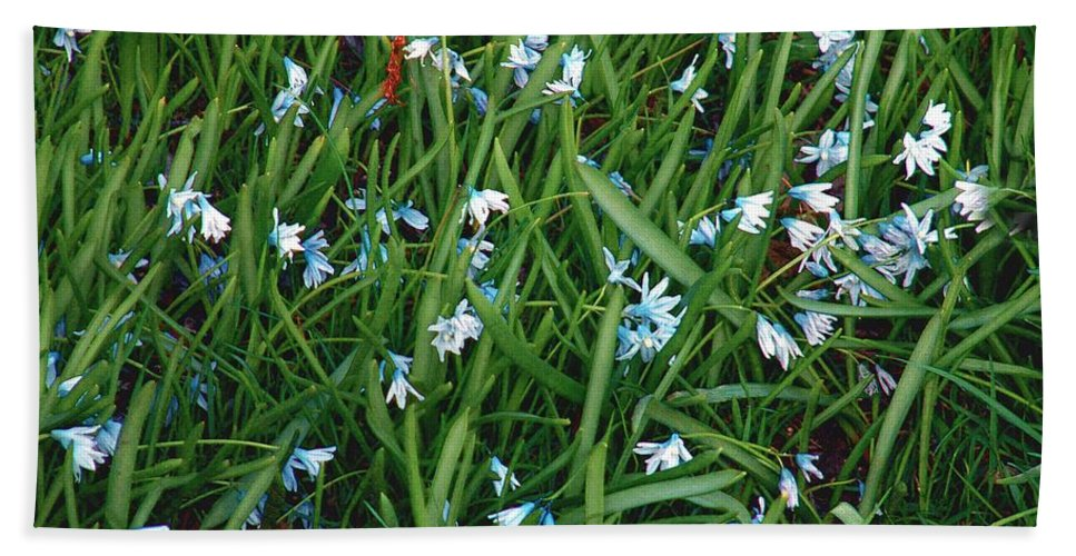 Blue Bath Sheet featuring the painting Iceblue Squill by RC DeWinter