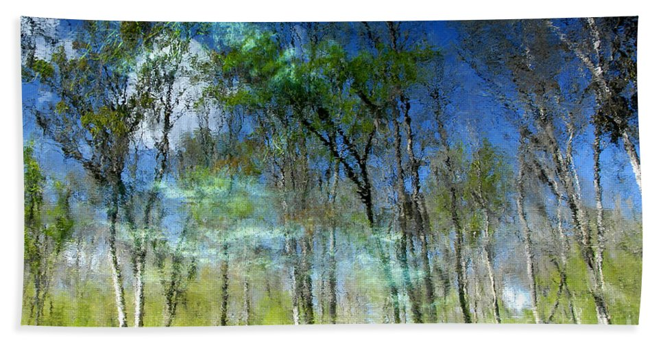 River Bath Towel featuring the photograph Ichetucknee Reflections by David Lee Thompson