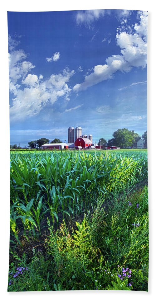 Earth Bath Sheet featuring the photograph If Seasons All Were Summers by Phil Koch