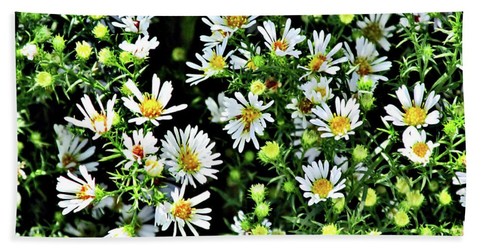 Wildflowers Bath Sheet featuring the photograph Illinois Wildflowers 1 by Don Baker