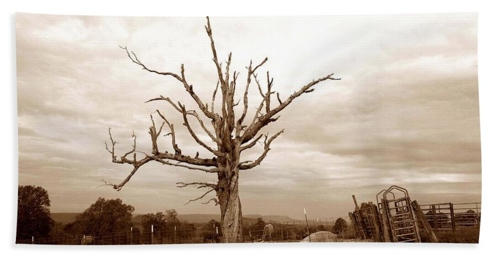 Arkansas Pig Pen Hand Towel featuring the photograph Fantastic Tree by John Myers
